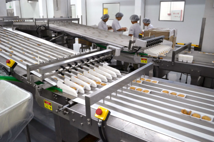 Automatic Online Tray Loading System